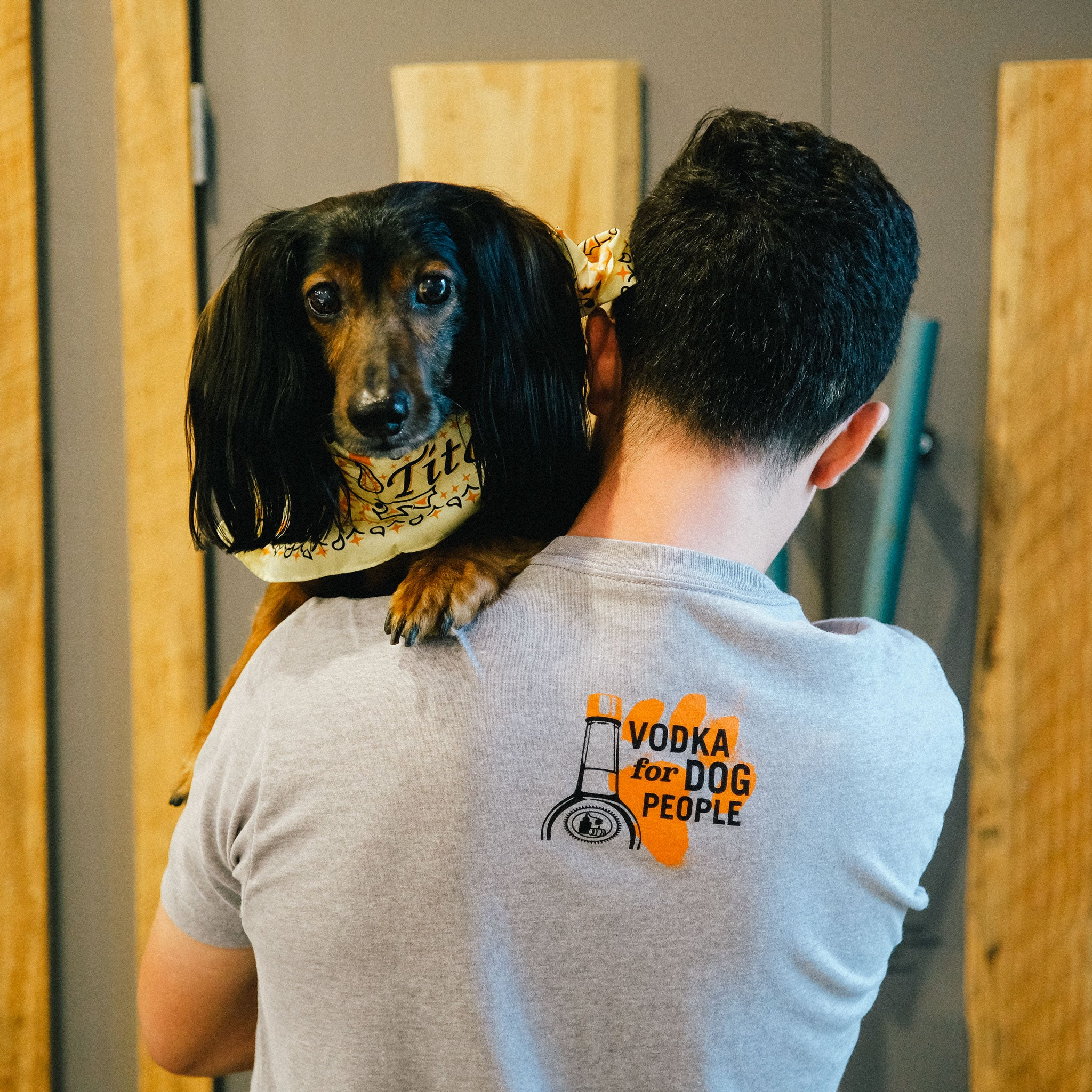 Back of person holding a dog and wearing gray short-sleeve t-shirt with Vodka For Dog People logo