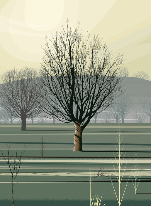 Dan Crisp Morning Shadow Limited Edition Art Prints