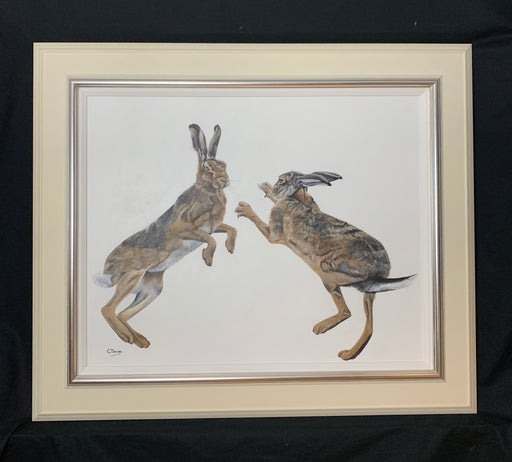 Gill Davies 'The Rumpus' New Original Animal Artwork For Sale