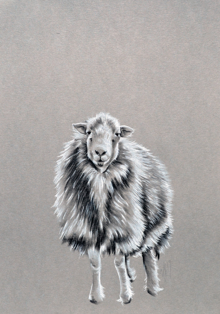 Victoria French Herdwick Original Art For Sale