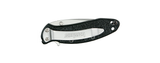 Kershaw 1620ST Scallion Serrated Assisted-Opening Knives
