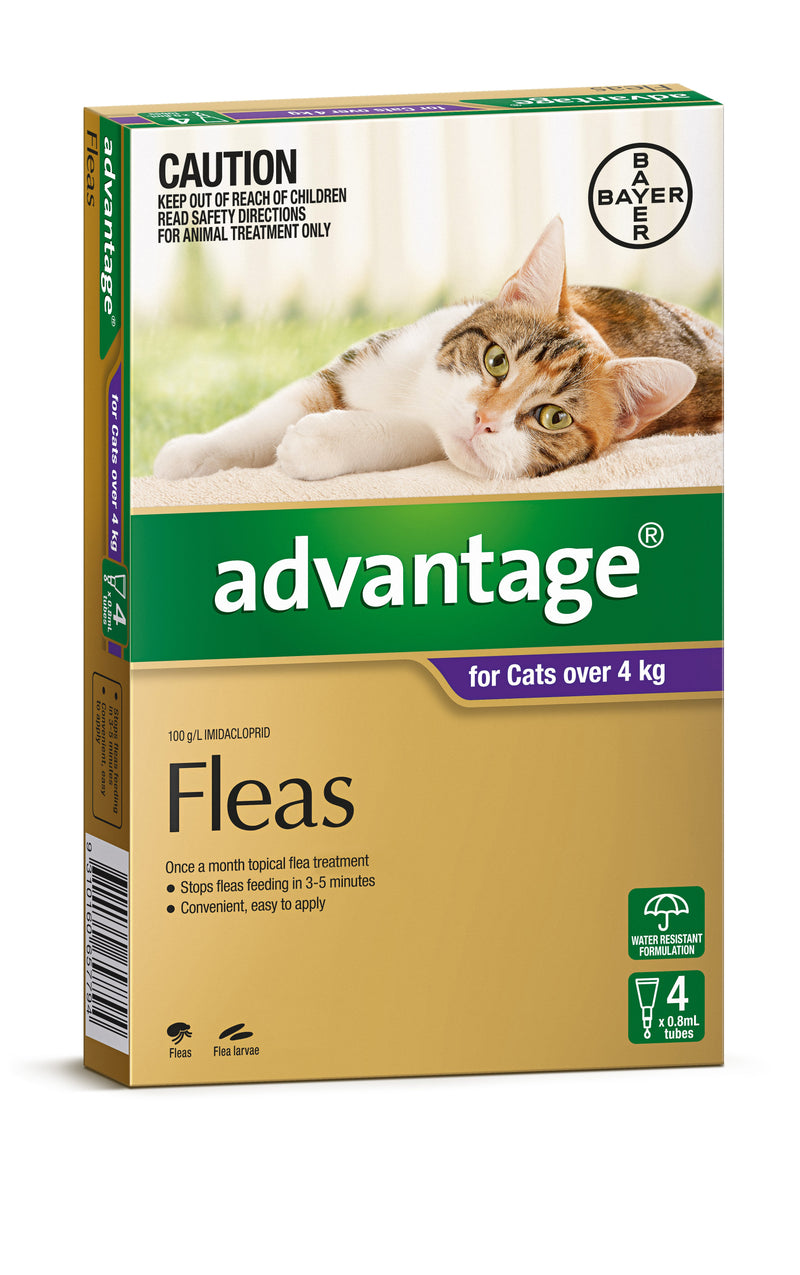 Advantage Cats over 4kg 4 Month Pack - RSPCA VIC