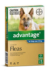 Advantage Dogs Over 25kg Blue 6 Month Pack - RSPCA VIC