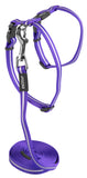 Rogz Alleycat Harness & Lead Set Purple