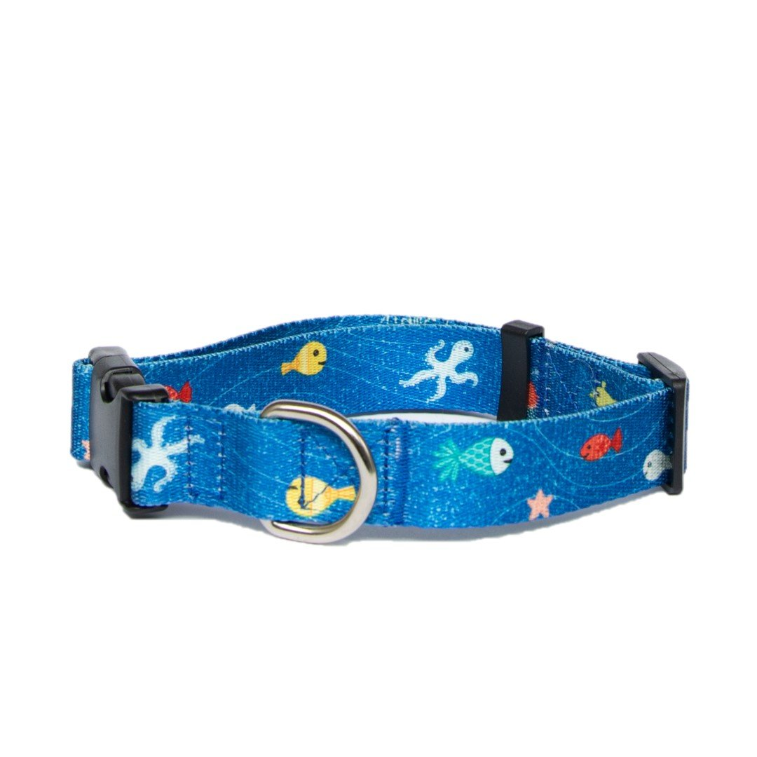 Anipal Great Barrier Reef Collar
