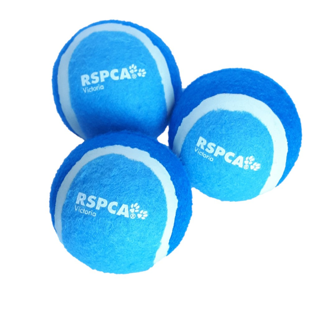 RSPCA Tennis Ball Blue 3 Pack