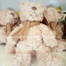 Teddy Bear ( Type A to D )