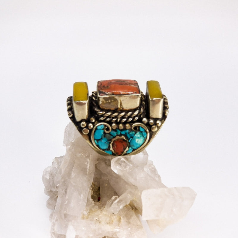 Royal Saddle Coral - Revital Exotic Jewelry & Apparel