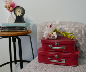 Red Suitcase Set