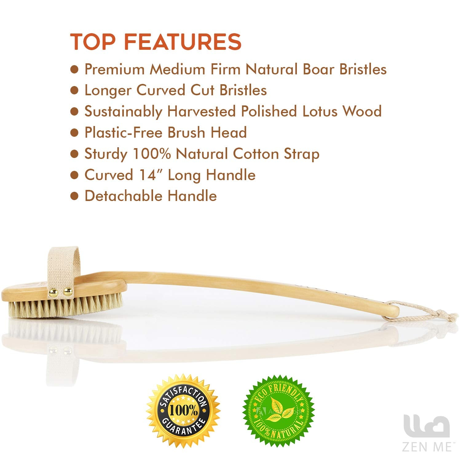 Dry Brush for Cellulite and Lymphatic Massage for Glowing Tighter Skin – Plastic-Free Natural Bristle Body Brush with Long Handle to Easily Exfoliate Dry Skin