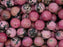 10 pcs Natural Stones Round Beads 8 mm, Rhodonite, Minerals, Russia