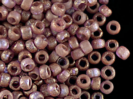 10 g 8/0 Etched Seed Beads, Crystal Etched Bronze, Czech Glass