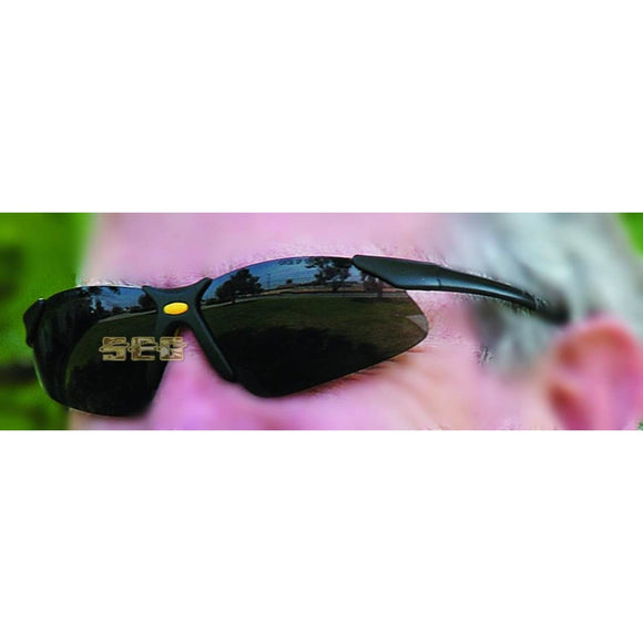 UV Safety Glasses SEGSAFE1017