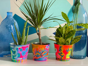 Hand Painted Planter Pots