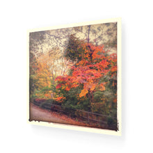 Load image into Gallery viewer, Autumn Colours Acrylic Print