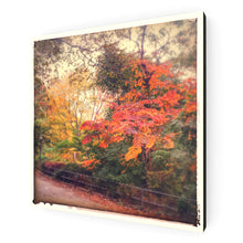 Load image into Gallery viewer, Autumn Colours Canvas Print