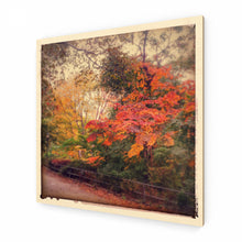 Load image into Gallery viewer, Autumn Colours Wood Print