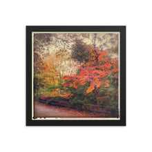 Load image into Gallery viewer, Autumn Colours Framed Print