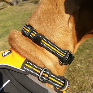 Ultimate Dog Collar - Padded, All Weather, Reflective, Steel Ring, Quick Release Buckle - Example Side