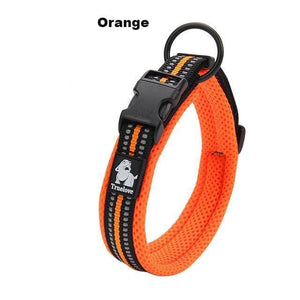 Ultimate Dog Collar - Padded, All Weather, Reflective, Steel Ring, Quick Release Buckle - Orange