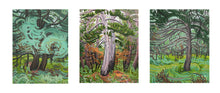 Load image into Gallery viewer, Manistee Forest III