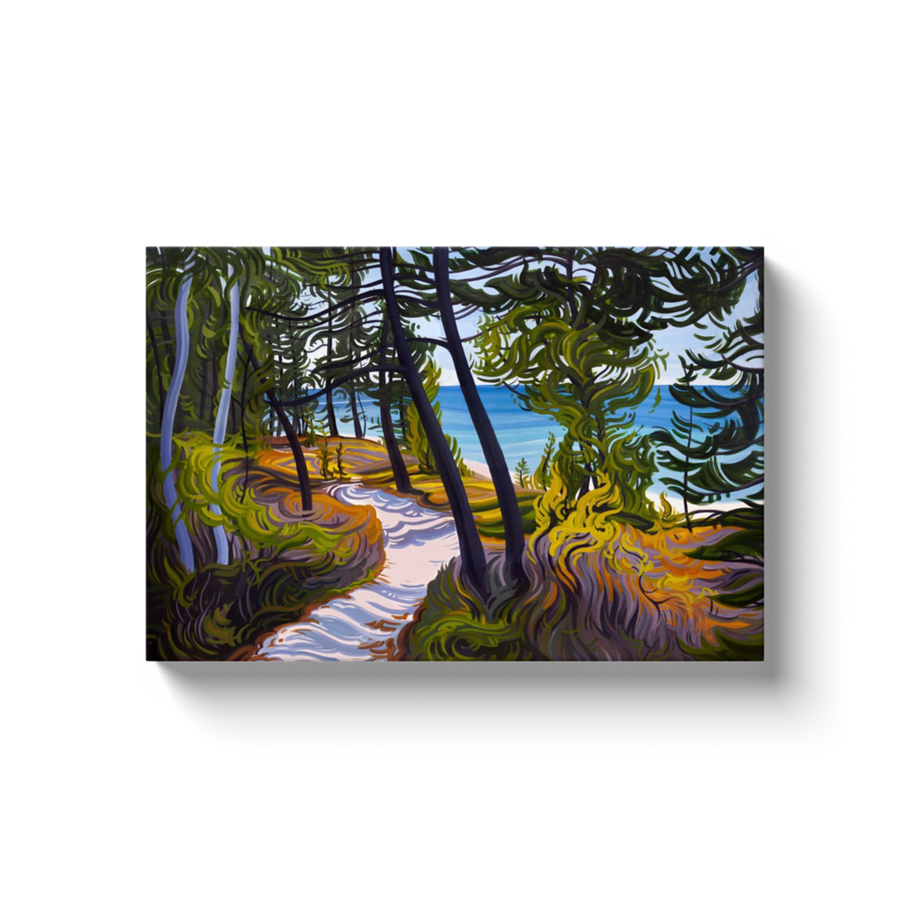 The Evolving Adventure Canvas Print