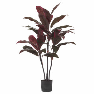 Cordyline Fake Plant