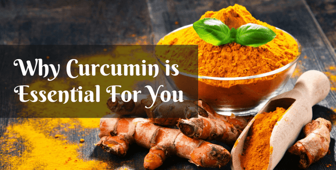Why Curcumin is Essential For You