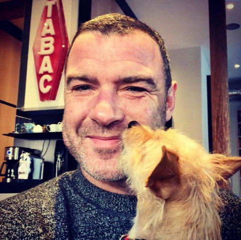 Liev Schreiber and his rescue dog affected by Hurricane Harvey