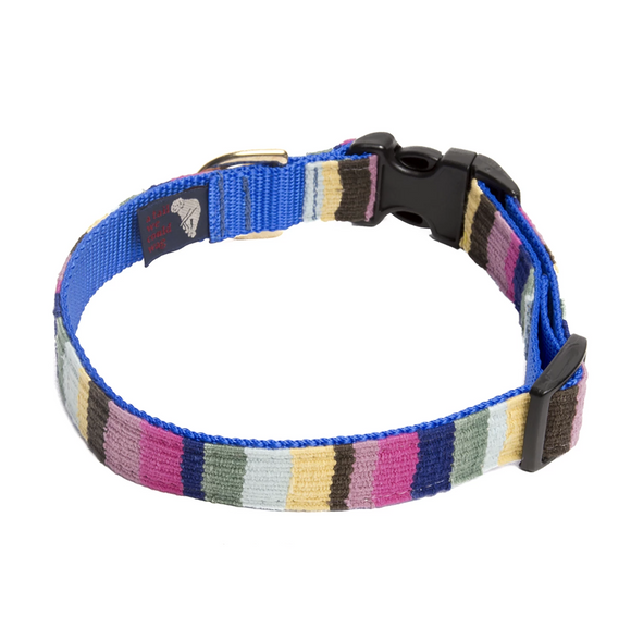 A tail we could wag Side-Release Dog Collar ~ At the Beach Bahama - Le Pet Luxe