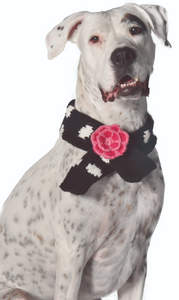 Black Polka Dot Flower Dog Scarf - Le Pet Luxe