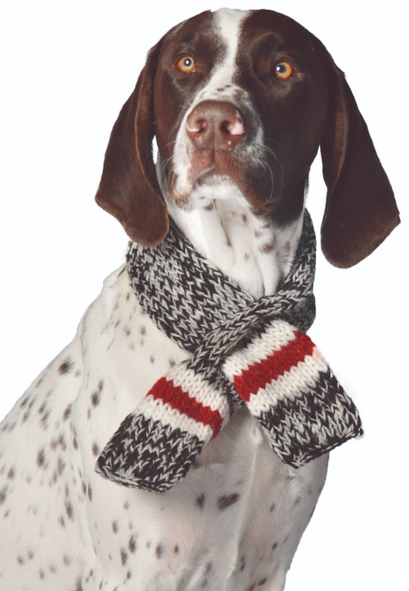 Boyfriend Dog Scarf - Le Pet Luxe