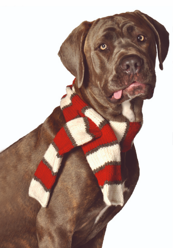 Hand Knit Wool White and Red Dog Scarf - Le Pet Luxe
