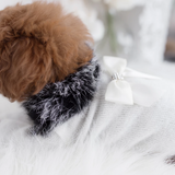 High Society Dog Sweater - Le Pet Luxe