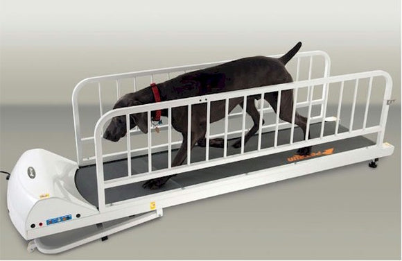 PetRun PR725 Dog Treadmill - Le Pet Luxe