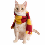 Hipster Wizard Scarf for Dogs - Le Pet Luxe