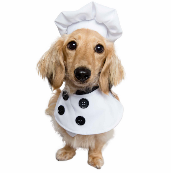 Chef Uniform Costume for Small Dogs & Cats - Le Pet Luxe