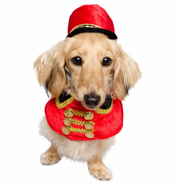 Holiday Nutcracker Soldier Costume for Small Dogs & Cats - Le Pet Luxe