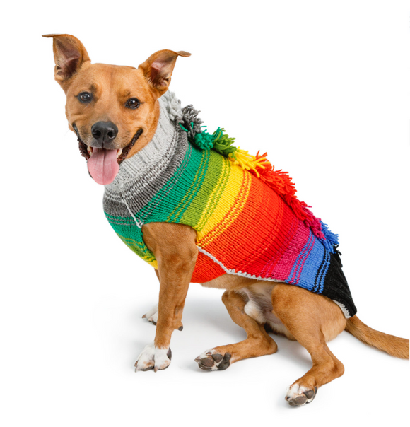 Rainbow Mohawk Dog Sweater - Le Pet Luxe