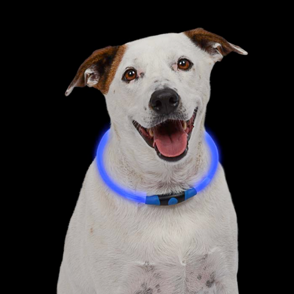 NiteHowl LED Safety Necklace ~ Blue - Le Pet Luxe