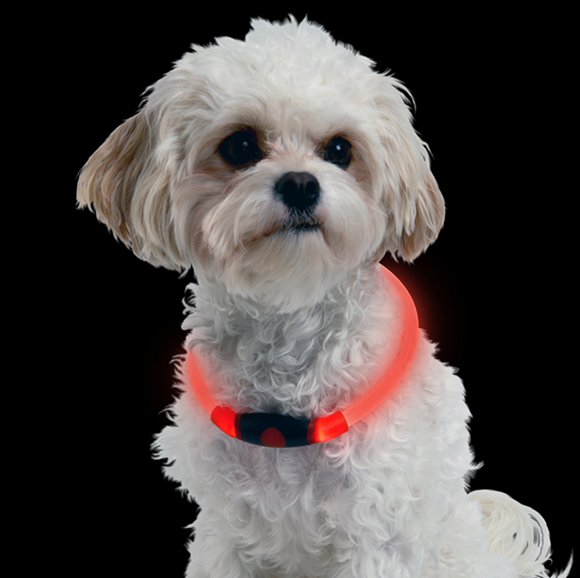 NiteHowl LED Safety Necklace ~ Red - Le Pet Luxe