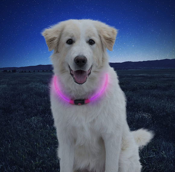 NiteHowl LED Safety Necklace ~ Pink - Le Pet Luxe