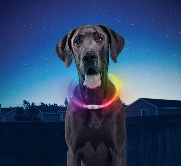 NiteHowl Rechargeable LED Necklace ~ Disco-O Select - Le Pet Luxe