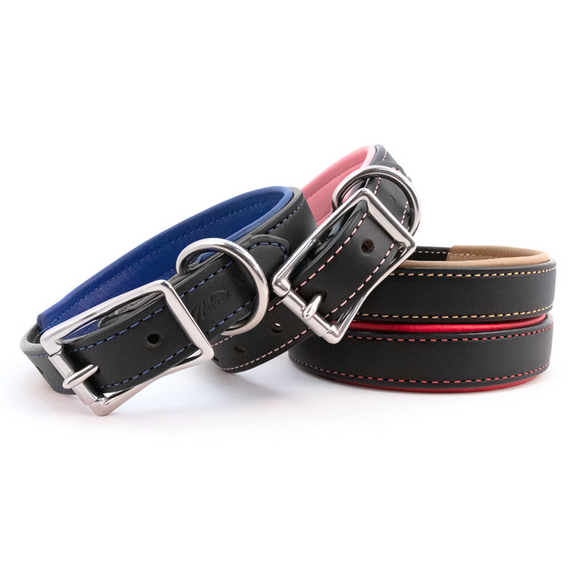 Padded Leather Collar - Le Pet Luxe