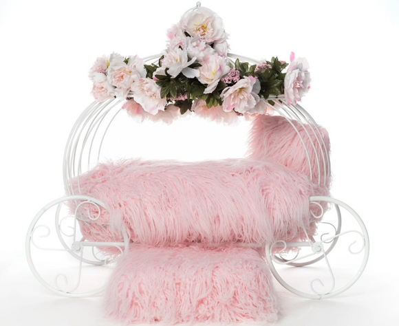 Flower Girl Dog Carriage - Le Pet Luxe