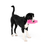 Custer Dog Toy