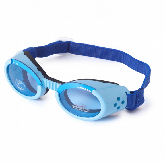 Interchangeable Lens Dog Sunglasses ~ Blue Frame with Blue Lens - Le Pet Luxe