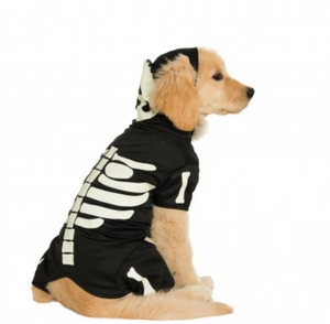 Glow in The Dark Skeleton Dog Costume - Le Pet Luxe