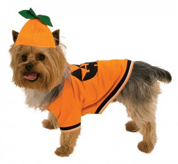 Pumpkin Dog Costume - Le Pet Luxe