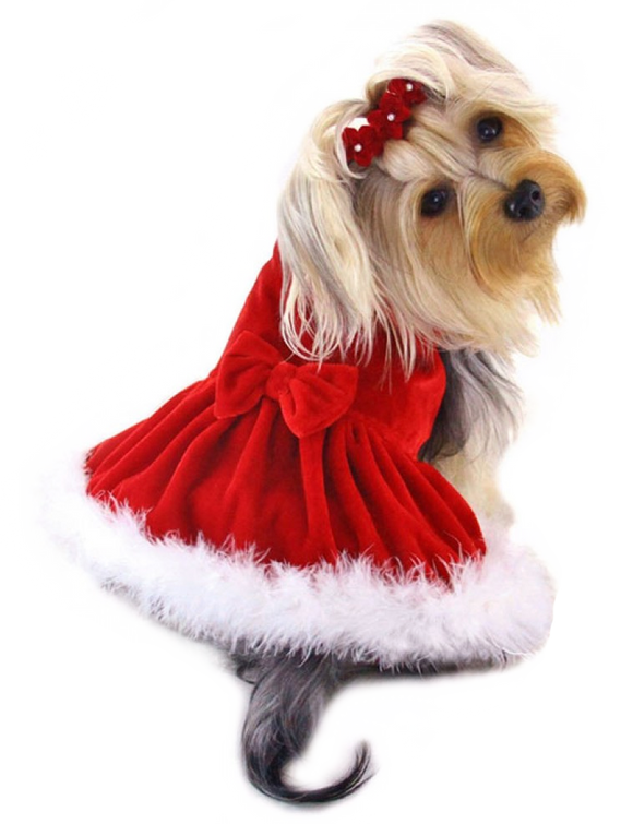 Elegant Christmas Dress with Furry Trims, Le Pet Luxe